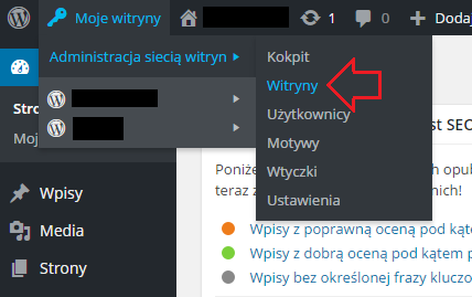Dodawanie domeny zewnętrznej do WordPress Multisite