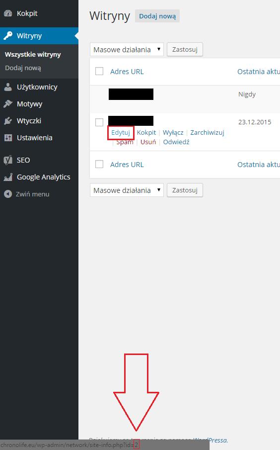 dodawanie_domeny_zewnetrznej_wordpress-multisite3